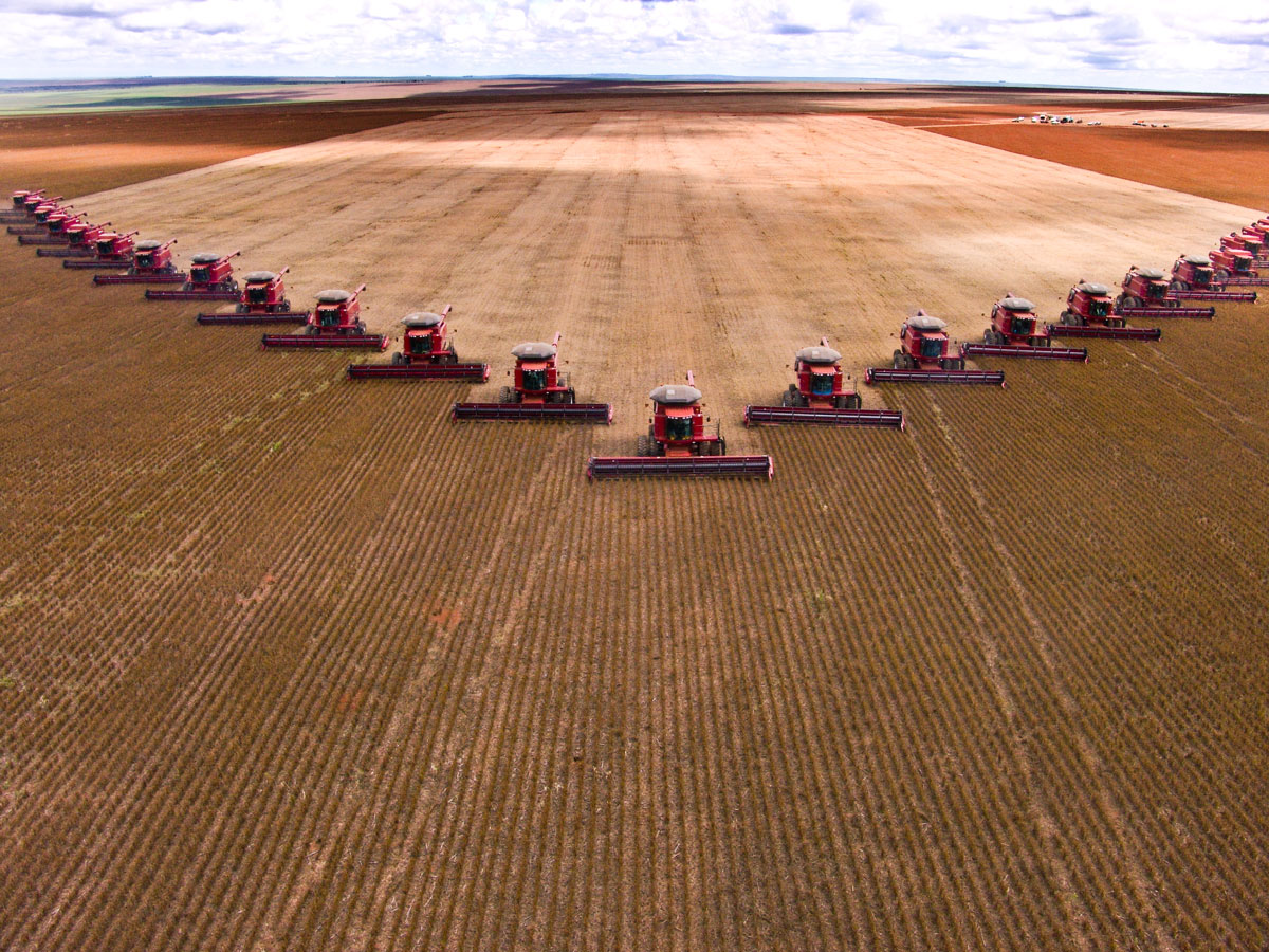 Case IH combines harvesting in a V-formation